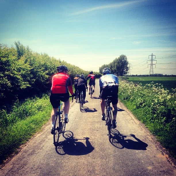 Back of the teamstrawb peloton